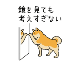 Anz the Japanese shiba dog sticker #3202202