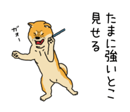 Anz the Japanese shiba dog sticker #3202204