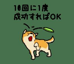Anz the Japanese shiba dog sticker #3202205