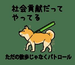 Anz the Japanese shiba dog sticker #3202208