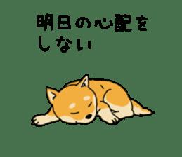 Anz the Japanese shiba dog sticker #3202210