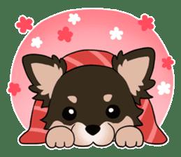 Sushi Animal English edition sticker #3205129