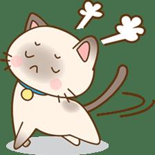 Funny Siamese kitten sticker #3221294