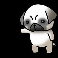 Decline pug dog