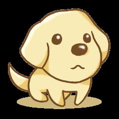 Sticker of the Labrador Retriever