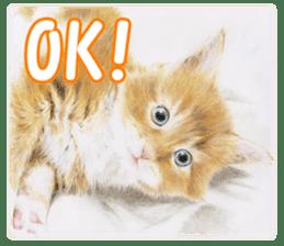 Colored pencil Cat sticker sticker #3343444
