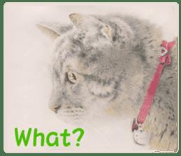 Colored pencil Cat sticker sticker #3343448