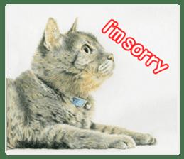 Colored pencil Cat sticker sticker #3343449