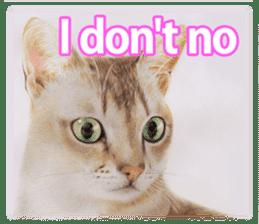 Colored pencil Cat sticker sticker #3343457