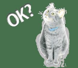 Colored pencil Cat sticker sticker #3343458