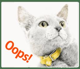Colored pencil Cat sticker sticker #3343472