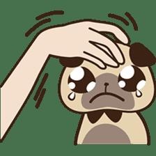 Cute pug puppy sticker #3366637