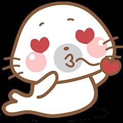 Baby Seal , so cute