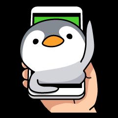 Petanco Penguin (Basic Sticker)