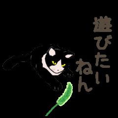 University Cat's Kansai Dialect