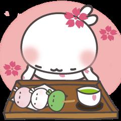 Hello! Sakura the rabbit