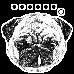 DOG! DOG! DOG!