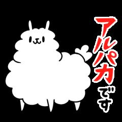 Burly alpaca