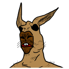 kangaroo's life