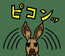 kangaroo's life sticker #3522305