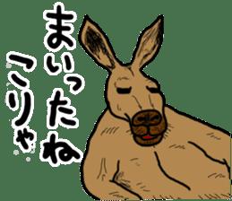 kangaroo's life sticker #3522316