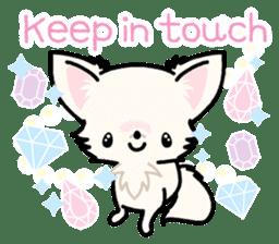 Kawaii Chihuahua 3 (English) sticker #3523303