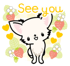 Kawaii Chihuahua 3 (English) sticker #3523313