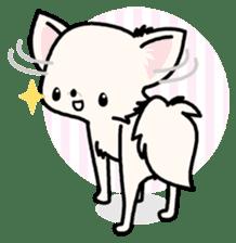Kawaii Chihuahua 3 (English) sticker #3523318
