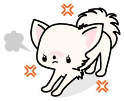 Kawaii Chihuahua 3 (English) sticker #3523322