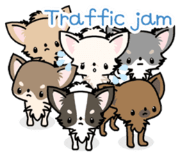 Kawaii Chihuahua 3 (English) sticker #3523329
