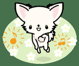 Kawaii Chihuahua 3 (English) sticker #3523330