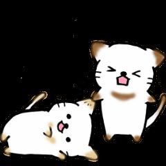 Couple de NyanNyan