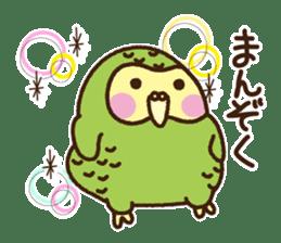 Happy Kakapo 2 sticker #3595857