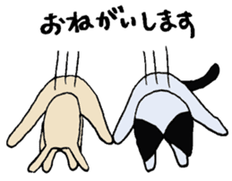 The Cat and Dog sticker #3630449