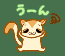 Kawaii!.Sticker of Flying squirrel sticker #3642348