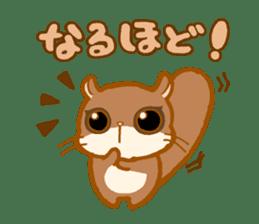 Kawaii!.Sticker of Flying squirrel sticker #3642356
