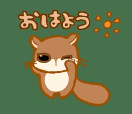 Kawaii!.Sticker of Flying squirrel sticker #3642359