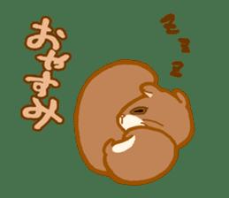 Kawaii!.Sticker of Flying squirrel sticker #3642360
