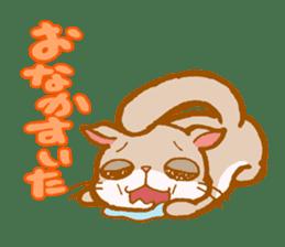 Kawaii!.Sticker of Flying squirrel sticker #3642373