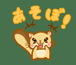 Kawaii!.Sticker of Flying squirrel sticker #3642376