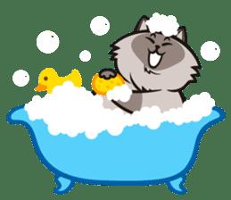 Pao Pao Piggy Cat sticker #3657157