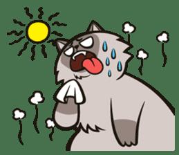 Pao Pao Piggy Cat sticker #3657158