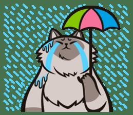 Pao Pao Piggy Cat sticker #3657160