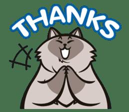 Pao Pao Piggy Cat sticker #3657170