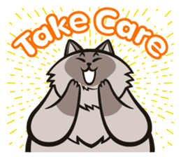 Pao Pao Piggy Cat sticker #3657176