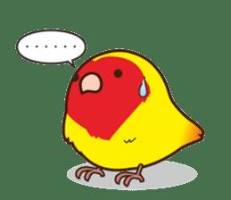Misslovebird-Cute Lovebird sticker #3658232