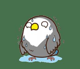 Misslovebird-Cute Lovebird sticker #3658262