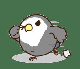 Misslovebird-Cute Lovebird sticker #3658270