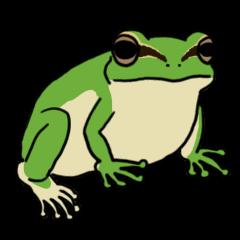 Tree frog man!