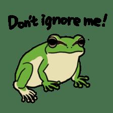 Tree frog man! sticker #3671612